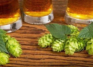 india Pale ale américaines