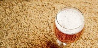 bières d'été