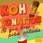 Poster promotinel du 2e atelier grand public de l'EBM: Koh conation. If you love pina colada.