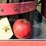 Une demi pomme et une pomme entière à côté d'un vieux pressoir