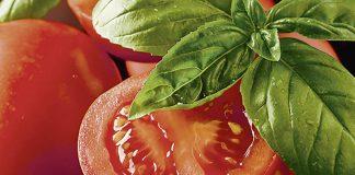 De belles tomates, dont une tranchée en deux avec du basilic