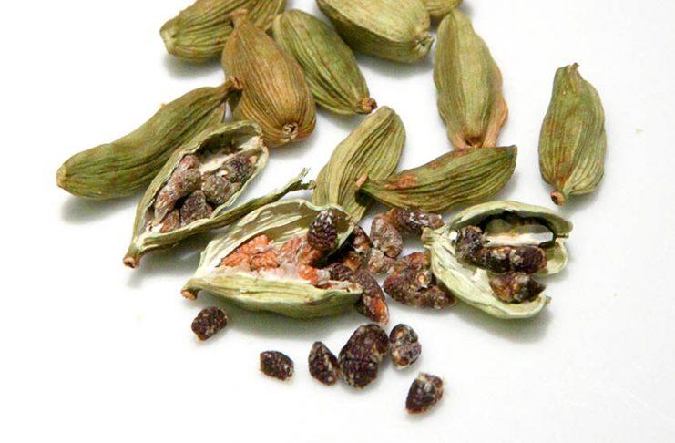 Des grains de cardamome et leurs écorces sur une surface blanche