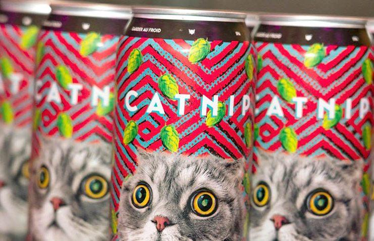 Des canettes de catnip avec le visage d'un chat